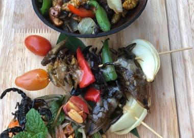 მატლების სალათი და მორიელის ასორტი