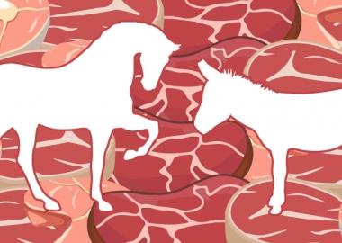 ხორცპროდუქტების 35% ცხენისა და ვირის ხორცს შეიცავს