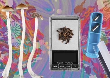 მელბურნის ჰოსპიტალი Magic Mushroom-ებით მომაკვდავი პაციენტებისთვის საცდელ თერაპიას იწყებს