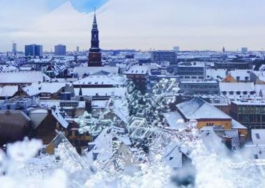 მარტოდმარტო დანიაში - საქმიანი მოგზაურის ჩანაწერები
