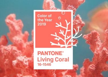 2019 წლის ფერი – კომპანია Pantone-ის ვერსიით