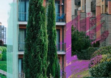 """გამწვანება ციფრებში - 37 000 ხე - """"მწვანე ქალაქი ლისზე"""""""