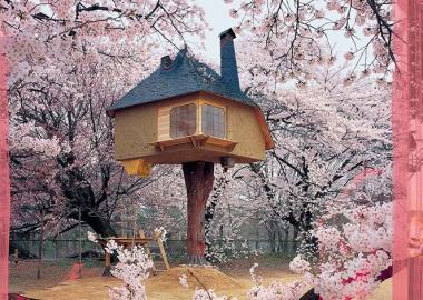 ტრენდი: ხეების კენწეროებში აშენებული სახლები, მათი არქიტექტურა და დიზაინი