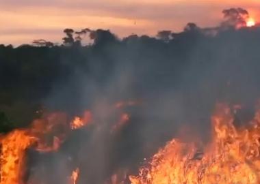 ბრაზილიის მემარჯვენე მთავრობა მკვახედ ეხმაურება ამაზონის ტყეების ხანძრებთან დაკავშირებულ შეშფოთებას