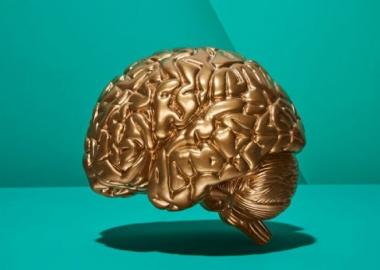 5 მეცნიერულად დადასტურებული გზა, რომელიც თქვენს ტვინს გააძლიერებს