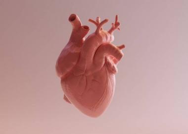 გულის იშემიური დაავადების დროს მედიკამენტური თერაპია ისეთივე ეფექტურია, როგორც ქირურგიული სტენტირება ან შუნტირება