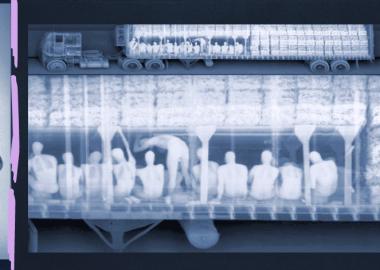 რენტგენით დანახული არალეგალური ემიგრაცია - ნოელ მეისონის ფოტოპროექტი