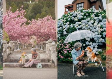 ბებიისა და შიბა ინუს საოცარი ფოტოები