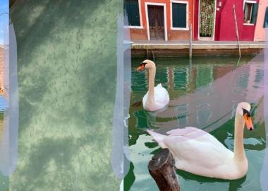 კორონავირუსის კარანტინმა იტალიაში წყლისა და ჰაერის დაბინძურების დონე რადიკალურად შეამცირა
