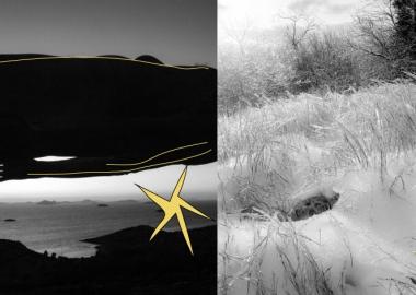 ექსტრემალური სელფები: რაფაელ მანკინინი - ფოტოგრაფი, რომელიც თავს ხიფათში იგდებს
