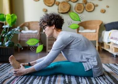 როგორ შევინარჩუნოთ ჯანსაღი ცხოვრების წესი სახლის პირობებში