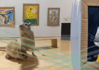 კარანტინში ყოფნისას მოწყენილმა წყვილმა საკუთარი ზაზუნებისთვის პაწაწინა ხელოვნების მუზეუმი შექმნა