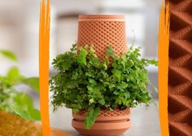 """გამოვიდა ინოვაციური ჭურჭელი - """"ტერაპლანტერი"""", რომელშიც მცენარე მიწის გარეშე იზრდება"""