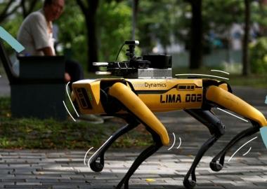 სინგაპურში რობოტი ძაღლები საზოგადოებას სოციალური დისტანციისკენ მოუწოდებენ