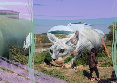 მხატვარმა გაზის ძველ ავზზე ილუზორული კატა-სფინქსი დახატა