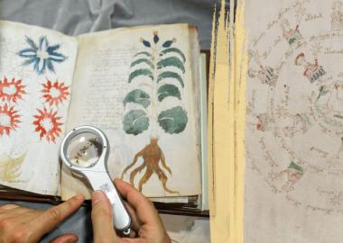 """""""ვოინიჩის მანუსკრიპტი"""" - მოგზაურობა 600 წლის გაუშიფრავი ილუსტრირებული ხელნაწერის მისტერიაში"""