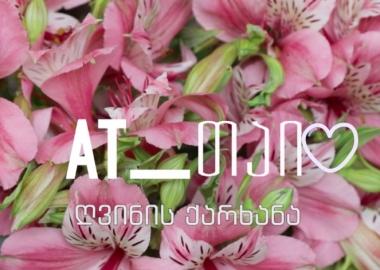 რუბრიკა #მომწონს - დუდის ყვავილების ქარხანა და ლილუ ლილიებით